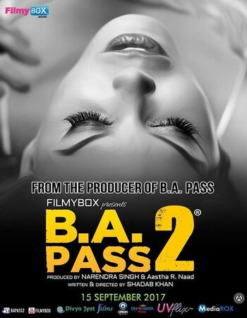 BA Pass 2 (2017) Hindi 300MB WEB-DL 480p