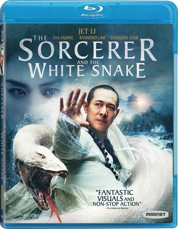 Sorcerer And The White Snake (2011) Dual Audio Hindi 480p BluRay 300MB