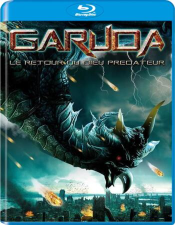 Garuda (2004) Dual Audio Hindi 480p BluRay x264 350MB