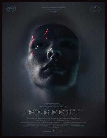Perfect 2018 720p WEB-DL Full English Movie Download