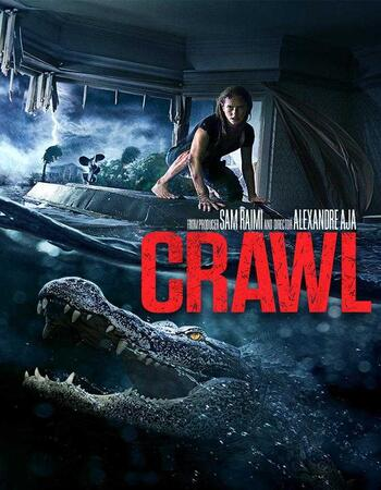Crawl (2019) English 720p WEB-DL x264 800MB ESubs Movie Download