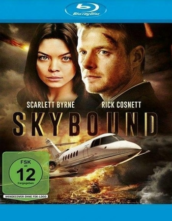 Skybound 2017 720p BluRay ORG Dual Audio In Hindi English