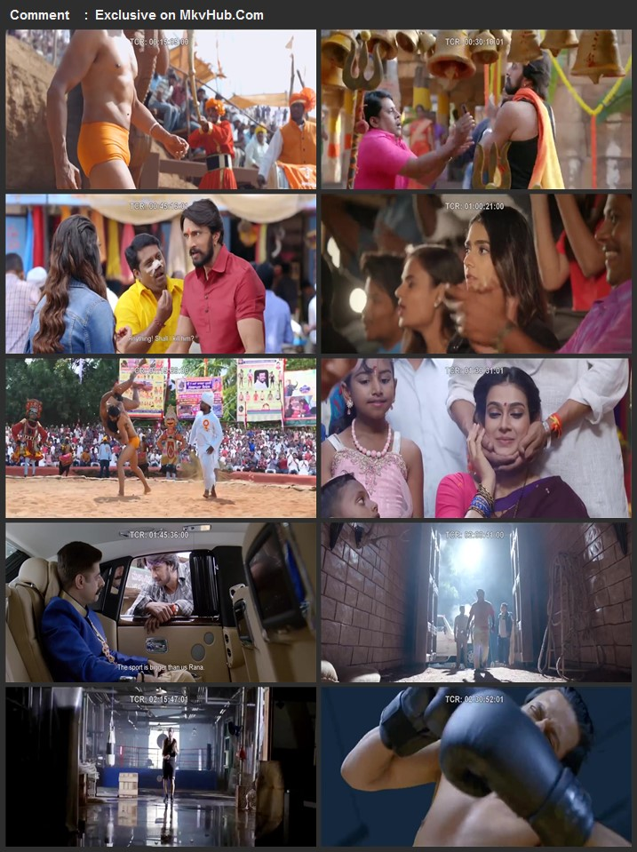 Pailwaan 2019 720p HDRip Full Hindi Movie Download