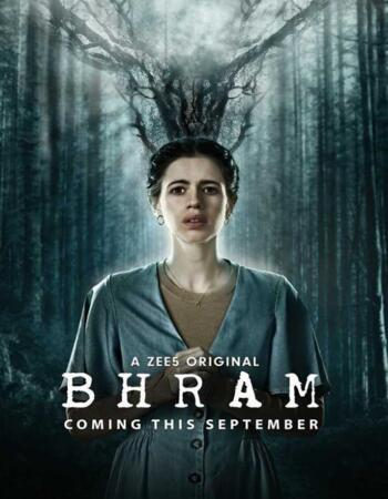Bhram 2019 S01 Hindi Complete 720p 480p WEB-DL 1.3GB Download