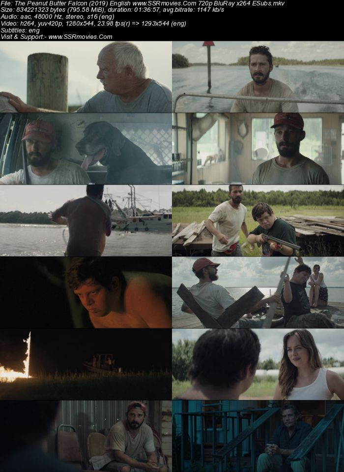 The Peanut Butter Falcon (2019) English 720p BluRay x264 800MB ESubs Movie Download