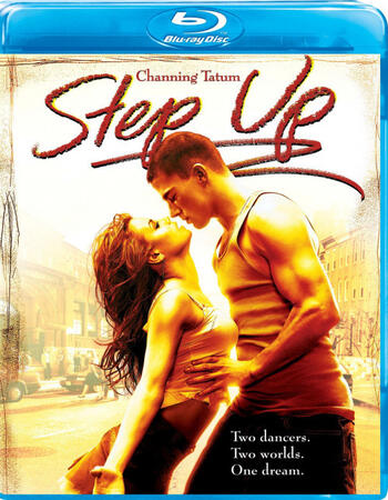Step Up (2006) Dual Audio Hindi 720p BluRay x264 900MB ESubs Movie Download