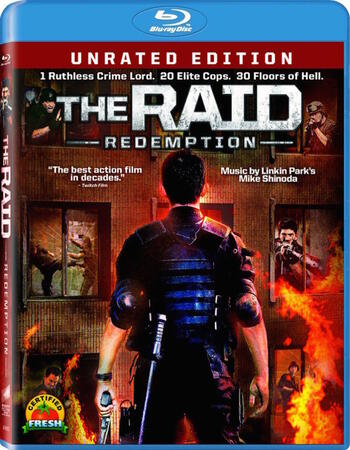 The Raid Redemption (2011) Dual Audio Hindi 480p BluRay 300MB ESubs