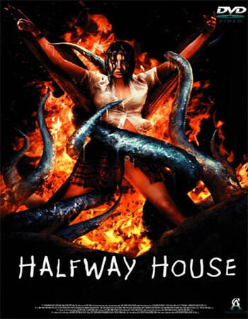 The Halfway House (2004) Hindi Dual Audio 720p HDRip 600MB MKV