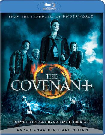The Covenant 2006 Dual Hindi 480p BRRip 300MB ESubs