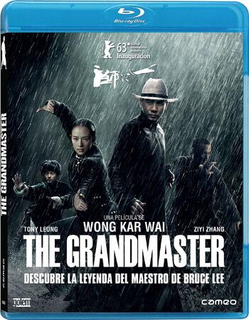 The Grandmaster (2013) Dual Audio Hindi 480p BluRay 350MB ESubs