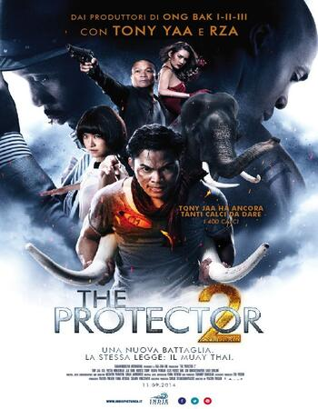 The Protector 2 (2013) Dual Audio Hindi 720p BluRay x264 800MB