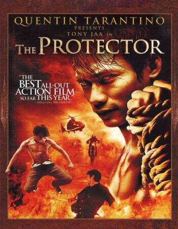 The Protector (2005) Dual Audio Hindi 720p BluRay x264 850MB