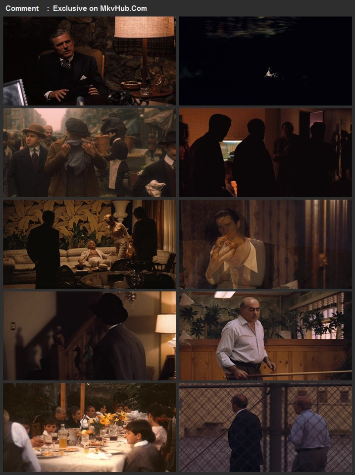 The Godfather Part II 1974 720p BluRay Full English Movie Download