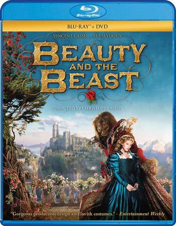 Beauty and the Beast 2014 Dual Audio Hindi 480p BluRay 350MB ESubs
