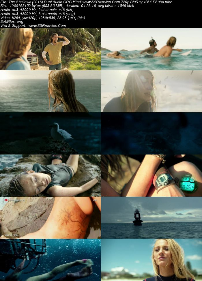 The Shallows (2016) Hindi 480p 350MB BluRay Dual Audio Full Movie Download