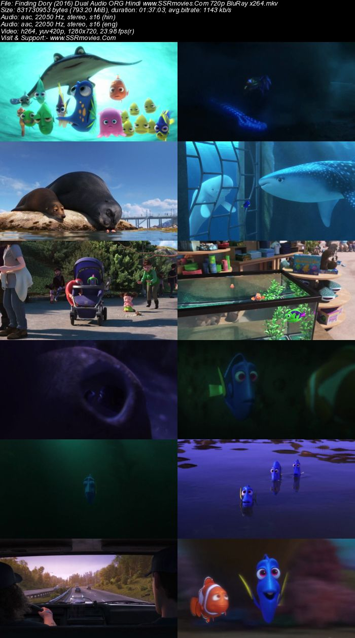 Finding Dory (2016) Dual Audio Hindi 480p BluRay x264 300MB Full Movie Download