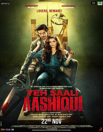 Yeh Saali Aashiqui (2019) Hindi 480p WEB-DL x264 400MB Full Movie Download
