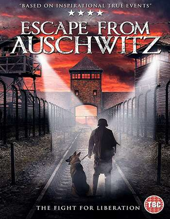 The Escape from Auschwitz 2020 English 720p WEB-DL 700MB Download