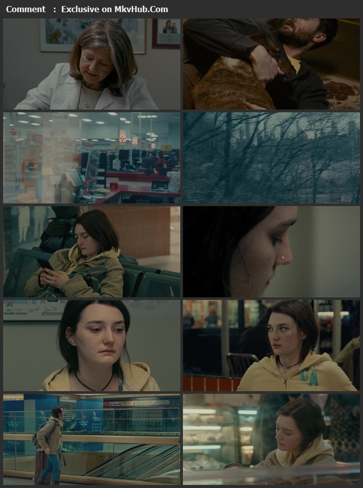 Never Rarely Sometimes Always 2020 English 720p WEB-DL 900MB Download