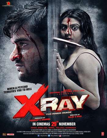 X Ray: The Inner Image 2019 Hindi 720p WEB-DL 900MB Download