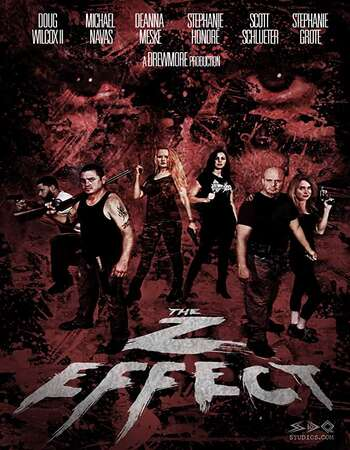 The Z Effect 2016 Dual Hindi 480p BluRay x264 300MB