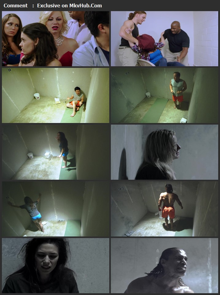 Solitary Confinement 2017 English 720p WEB-DL 950MB Download