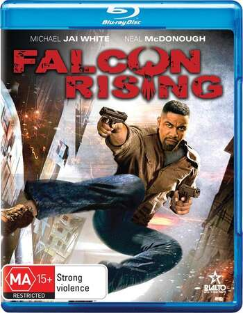 Falcon Rising 2014 Dual Hindi 480p BRRip 300MB ESubs