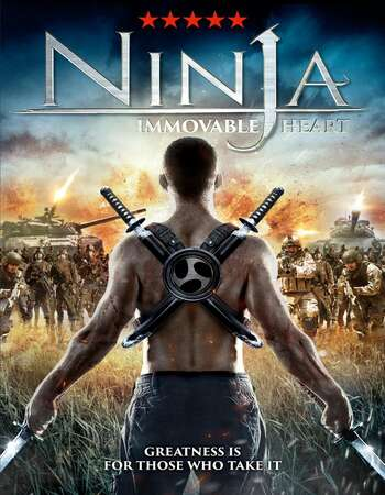 Ninja Immovable Heart 2014 Dual Hindi 350MB BRRip ESubs