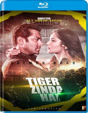 Tiger Zinda Hai (2017) Hindi 480p BluRay x264 500MB Full Movie Download