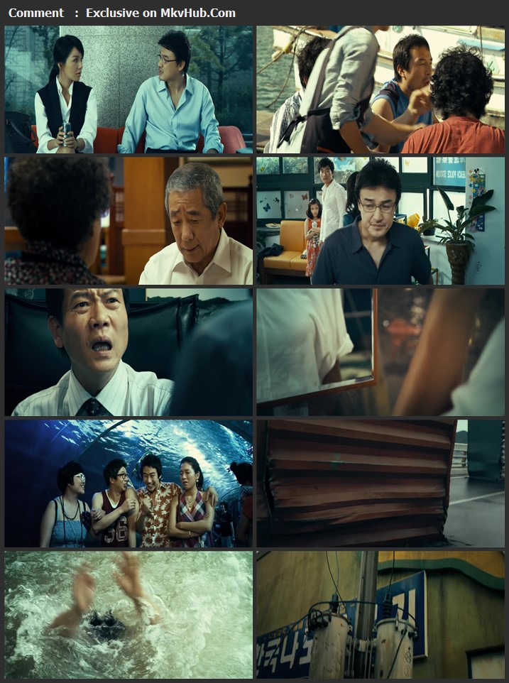 Tidal Wave 2009 Dual Audio [Hindi-Korean] 720p BluRay 1.1GB Download