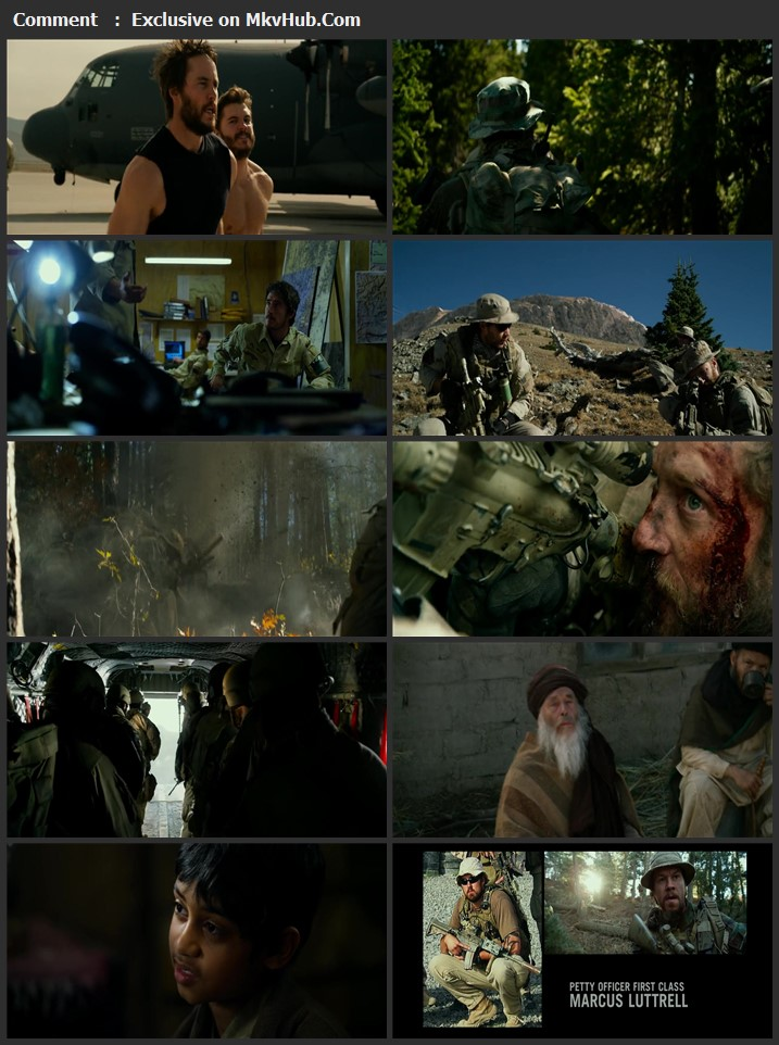 Lone Survivor 2013 Dual Audio [Hindi-English] 720p BluRay 950MB Download