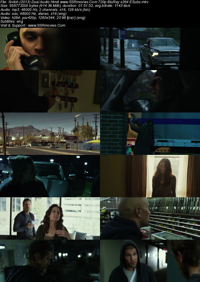 Snitch (2013) Dual Audio Hindi 720p BluRay x264 900MB Full Movie Download