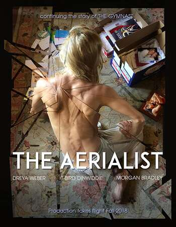 The Aerialist 2020 English 720p WEB-DL 900MB Download
