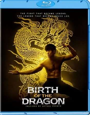 Birth of the Dragon (2016) Dual Audio Hindi 720p BluRay x264 800MB Full Movie Download