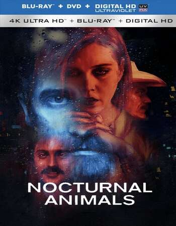 Nocturnal Animals (2016) Dual Audio Hindi 480p BluRay 350MB ESubs Full Movie Download