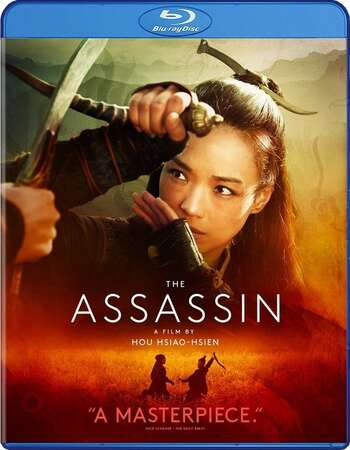 The Assassin (2015) Dual Audio Hindi 480p BluRay x264 350MB ESubs Full Movie Download