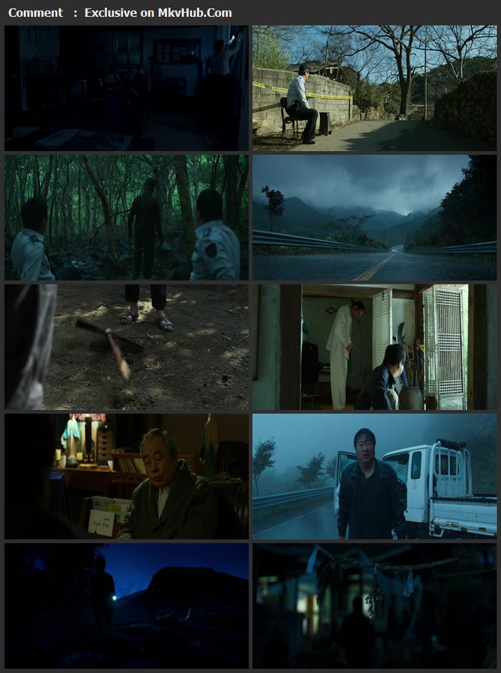 The Wailing 2016 Dual Audio [Hindi-English] 720p WEB-DL 1.3GB Download