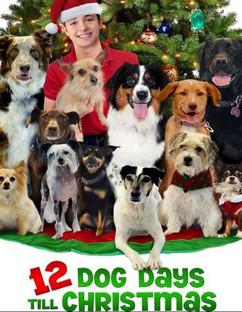 12 Dog Days Till Christmas (2014) Dual Audio Hindi 720p HDTV x264 900MB Full Movie Download