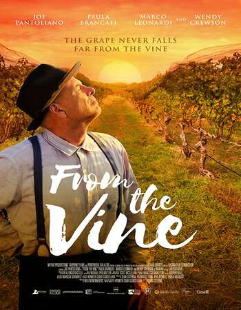 From the Vine 2020 English 720p WEB-DL 850MB Download