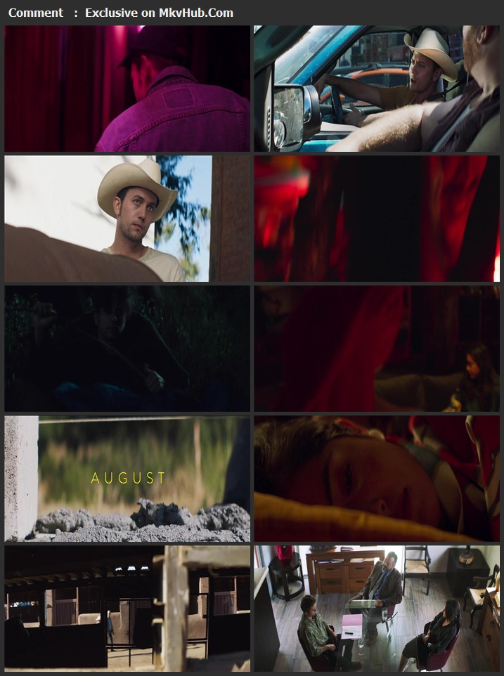 The Wall of Mexico 2020 English 720p WEB-DL 900MB Download
