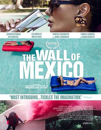 The Wall of Mexico 2020 English 720p WEB-DL 900MB ESubs