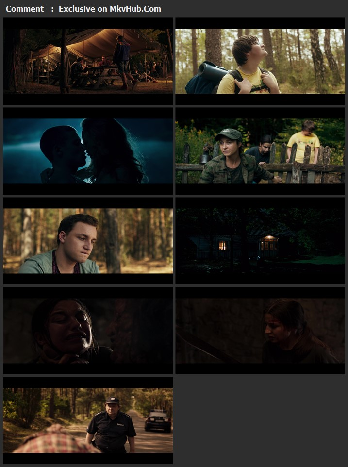 Nobody Sleeps in the Woods Tonight 2020 Polish 720p WEB-DL 900MB Download