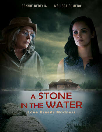 A Stone in the Water 2019 English 720p WEB-DL 850MB Download