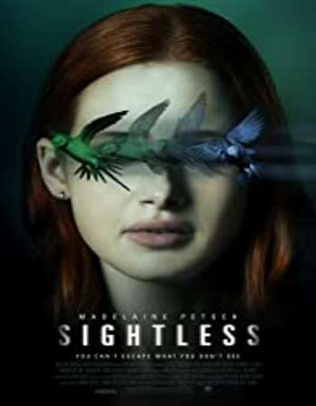 Sightless 2020 Dual Audio [Hindi-English] 720p BluRay 850MB ESubs