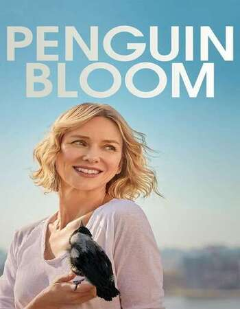Penguin Bloom 2020 English 720p WEB-DL 850MB ESubs