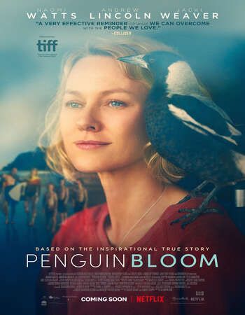Penguin Bloom (2020) English 720p WEB-DL x264 800MB Full Movie Download