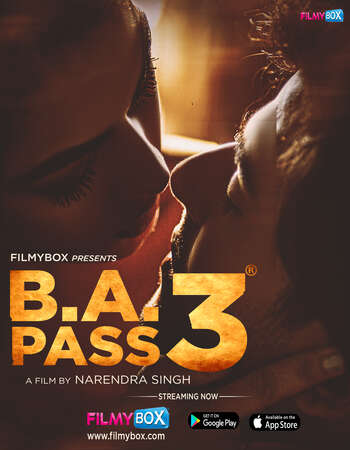 B.A. Pass 3 (2021) Hindi 480p WEB-DL x264 400MB Full Movie Download