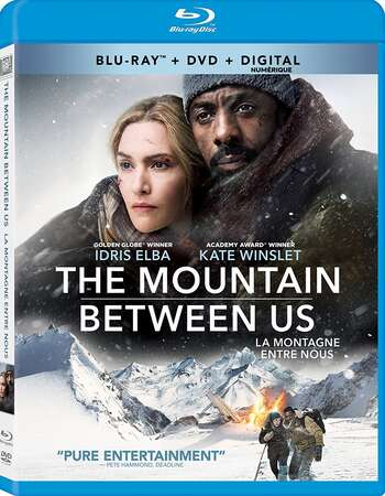 The Mountain Between Us (2017) Dual Audio Hindi 720p BluRay x264 900MB Full Movie Download