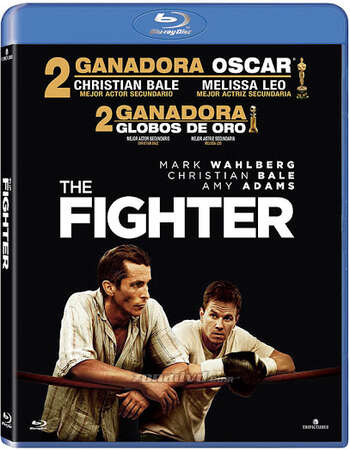 The Fighter (2010) Dual Audio Hindi 720p BluRay x264 700MB Full Movie Download