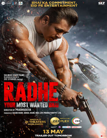 Radhe 2021 Hindi 720p WEB-DL x264 900MB ESubs